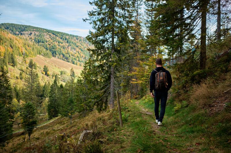 vakantie in het zwarte woud
